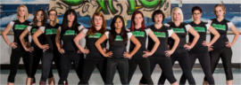 Silicon Valley Roller Girls to skate this Friday @ Bike Party